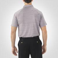 Men's Dri-Power® Striated Polo ROCK