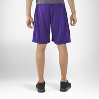 Men's Dri-Power® Essential Performance Shorts with Pockets PURPLE