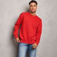 Men's Cotton Classic Fleece Crew Sweatshirt TRUE RED