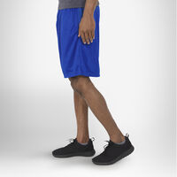Men's Dri-Power® Mesh Shorts with Pockets ROYAL