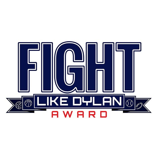 Fight Like Dylan